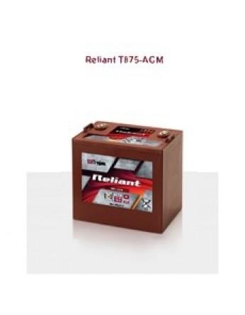 Μπαταρία Trojan Deep - Cycle AGM βαθιάς εκφόρτισης T875 AGM - 8V 160Ah(C20)